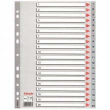 Regiszter, műanyag, A4, 1-20, ESSELTE, szürke