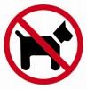 Információs matrica, kutyát bevinni tilos, APLI